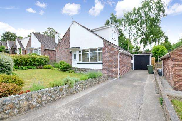 3 Bedrooms Detached Bungalow for sale in Newtake Rise, Newton Abbot, Devon