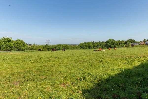 Land Commercial for sale in Newtonhead Farm - Lot 2, By Kilmaurs, North Ayrshire, KA3