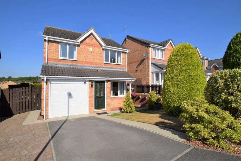 3 Bedrooms Detached House for sale in Sheridan Drive, East Stanley, Co Durham
