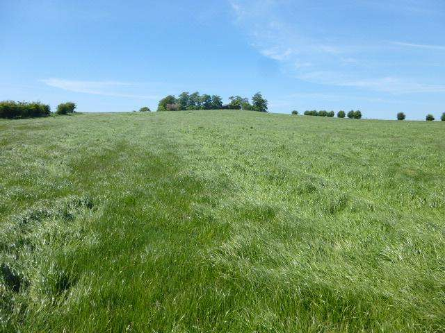Farm Land Commercial for sale in Tarbolton, Ayrshire KA5