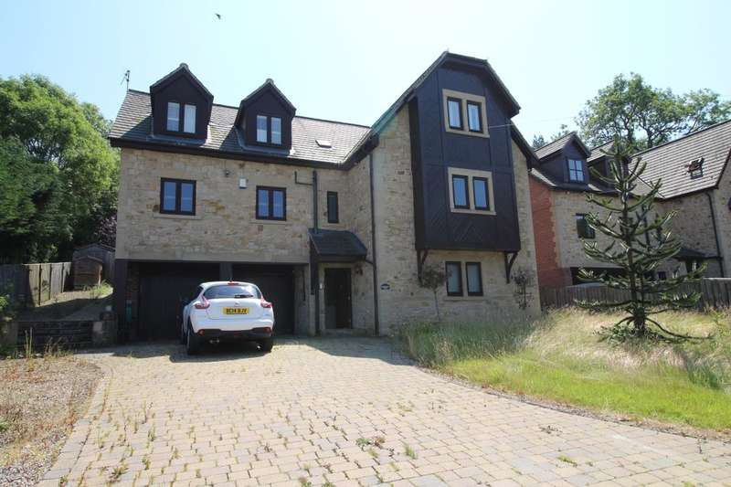 5 Bedrooms Detached House for sale in Low Westwood, Newcastle Upon Tyne, NE17
