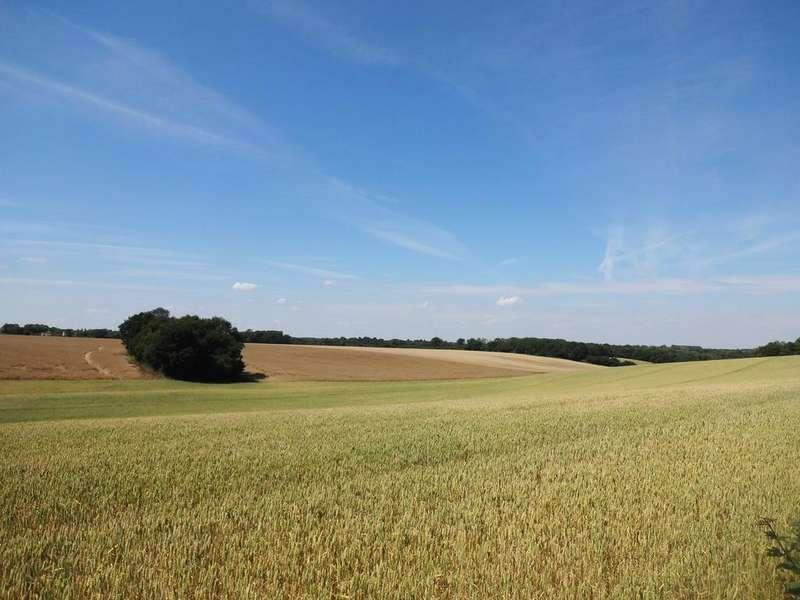 Farm Land Commercial for sale in Faversham, Kent ME13