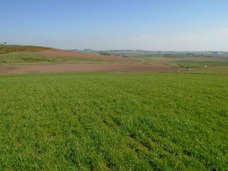 Land Commercial for sale in Catterline, Stonehaven AB39