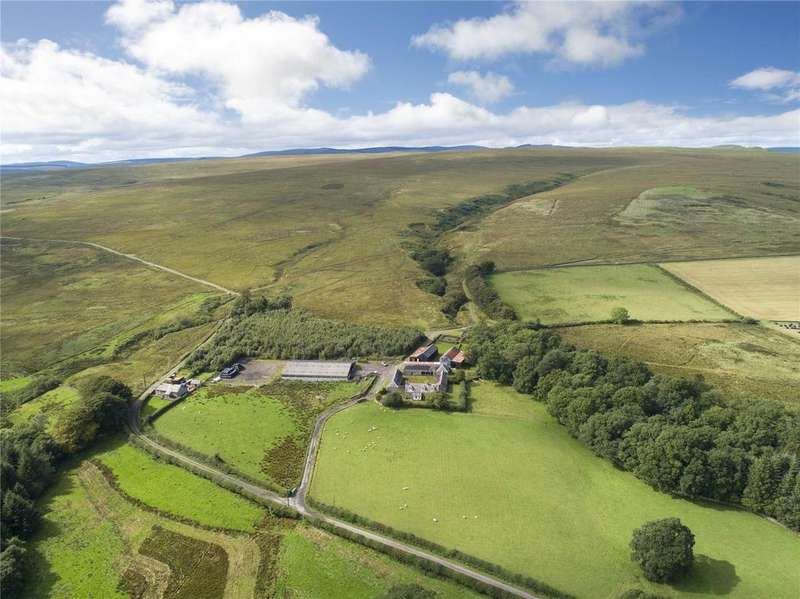Farm Commercial for sale in The Evertown Portfolio - Lot 5, Old Irvine Farm, Canonbie, Dumfriesshire, DG14