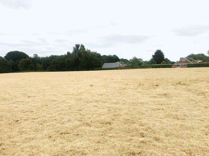 Land Commercial for sale in Land Woodland, Hundleby