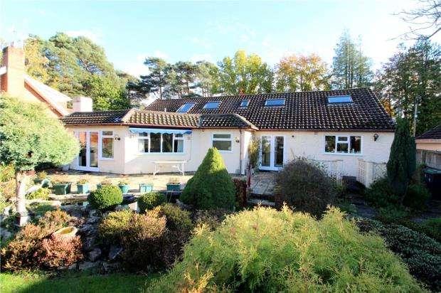 4 Bedrooms Detached Bungalow for sale in West Moors, Ferndown, Dorset, BH22