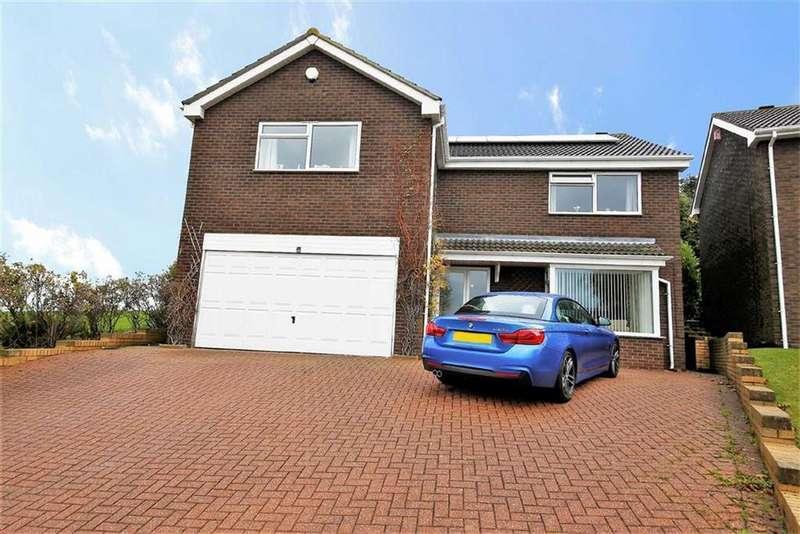 4 Bedrooms Detached House for sale in Grassholm Meadows, Essen Way, Sunderland, SR3