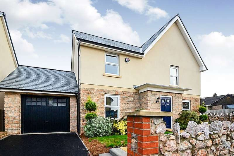 4 Bedrooms Detached House for sale in Hockmore Drive, Newton Abbot, TQ12
