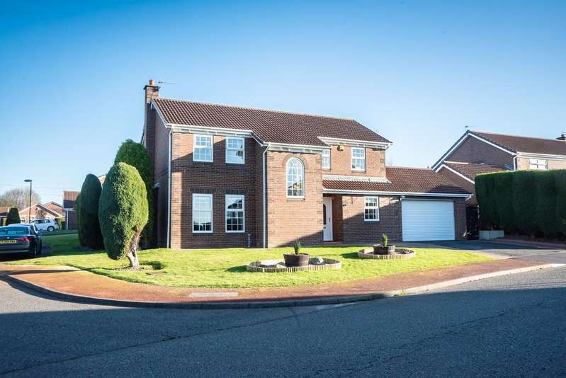 4 Bedrooms Detached House for sale in Ashford Grove, Newcastle Upon Tyne NE5