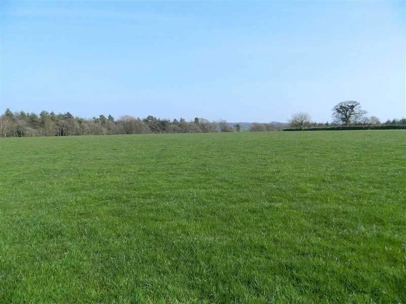 Land Commercial for sale in Upottery, Honiton, Devon, EX14