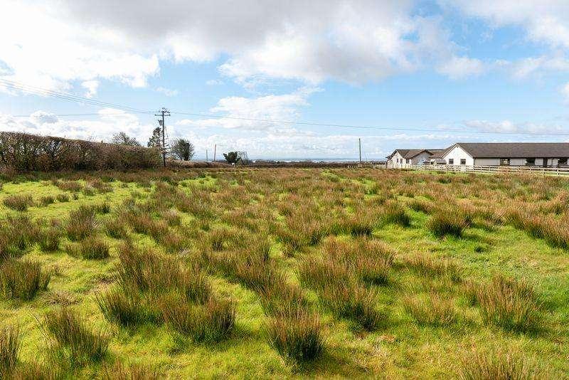 Land Commercial for sale in Plot, Whitesprings, Annan
