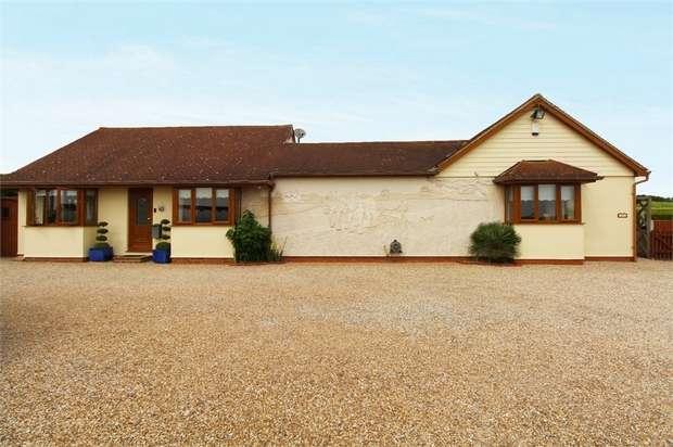 4 Bedrooms Detached Bungalow for sale in Lower Burnham Road, Latchingdon, Chelmsford, Essex