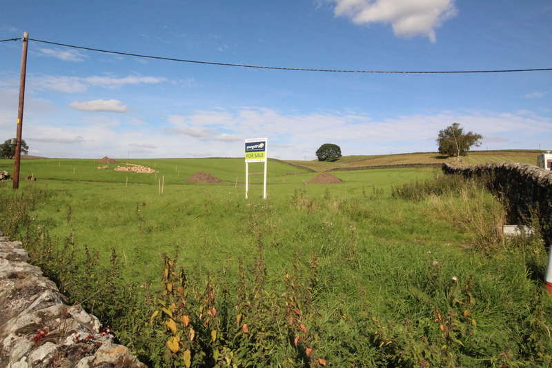 Land Commercial for sale in Greenhaugh