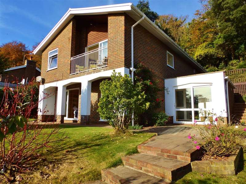 4 Bedrooms Detached House for sale in Hyde Tynings Close, Eastbourne