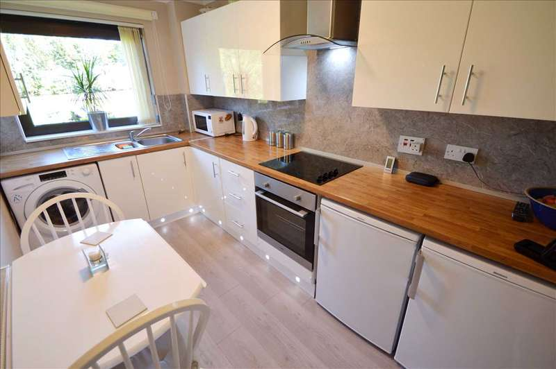 1 Bedroom Apartment Flat for sale in Hareleeshill Road, Larkhall