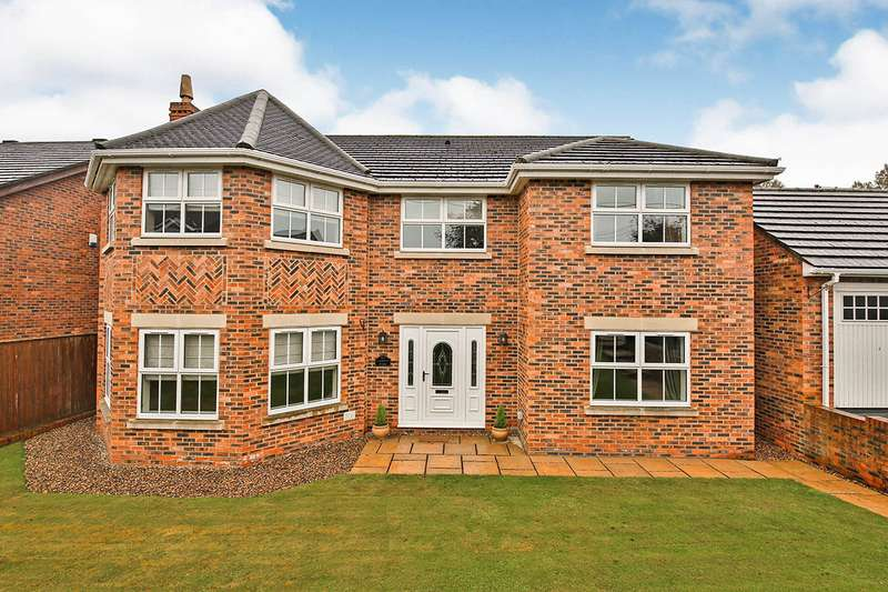 4 Bedrooms Detached House for sale in Meadow Grange, New Lambton, Houghton Le Spring, Durham, DH4