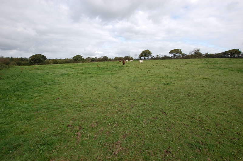 Land Commercial for sale in Conwyl Elfed CARMARTHENSHIRE