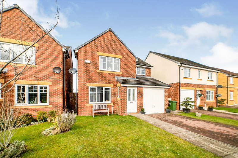 3 Bedrooms Detached House for sale in Derwent Water Drive, Blaydon-on-Tyne, Tyne and Wear, NE21