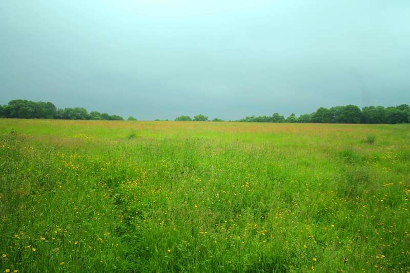 Land Commercial for sale in Long Hill, CR3