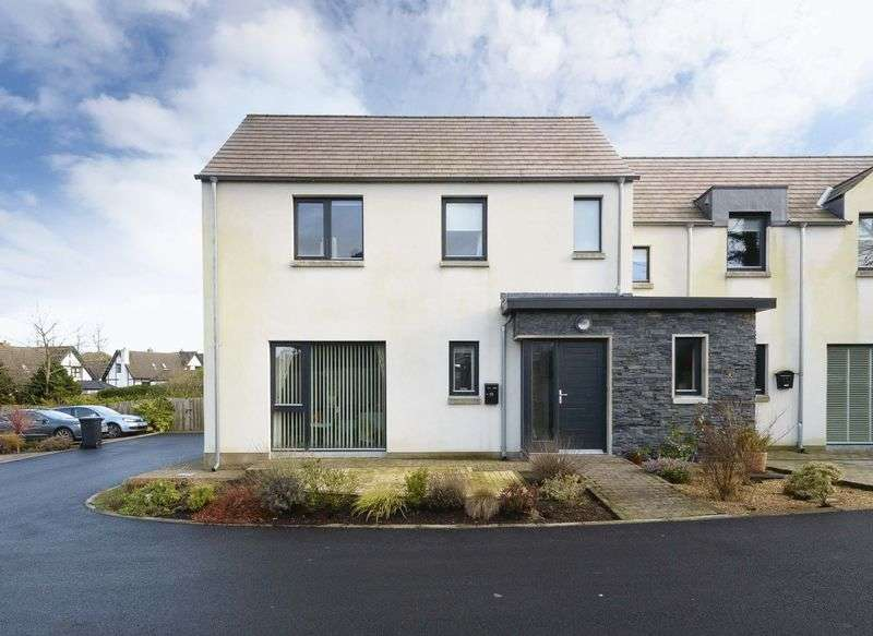 3 Bedrooms Semi Detached House for sale in 15 Birch Lane, Saintfield, BT24 7FP