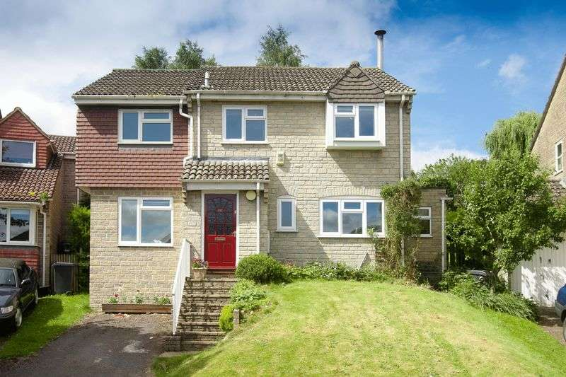 4 Bedrooms Detached House for sale in Springfield Park, Tisbury