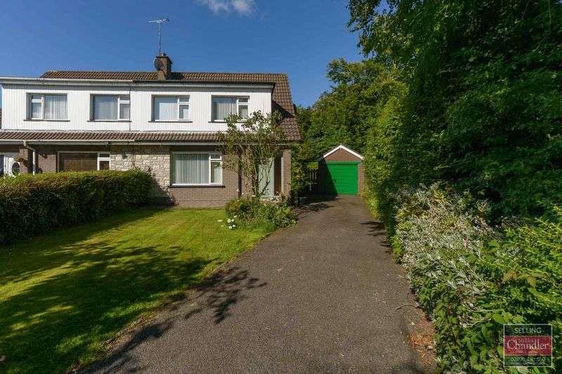 4 Bedrooms Semi Detached House for sale in 16 Prospect Park, Ballygowan, BT23 6LW