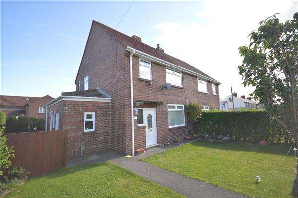 3 Bedrooms Terraced House for sale in Lumsden Terrace, Catchgate, Stanley
