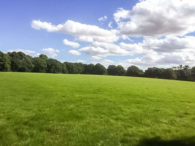 Land Commercial for sale in Lyefield Lane, Forest Green, Surrey, RH5