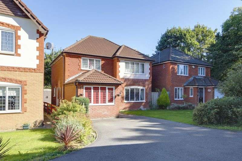4 Bedrooms Detached House for sale in Court Meadow, Newport