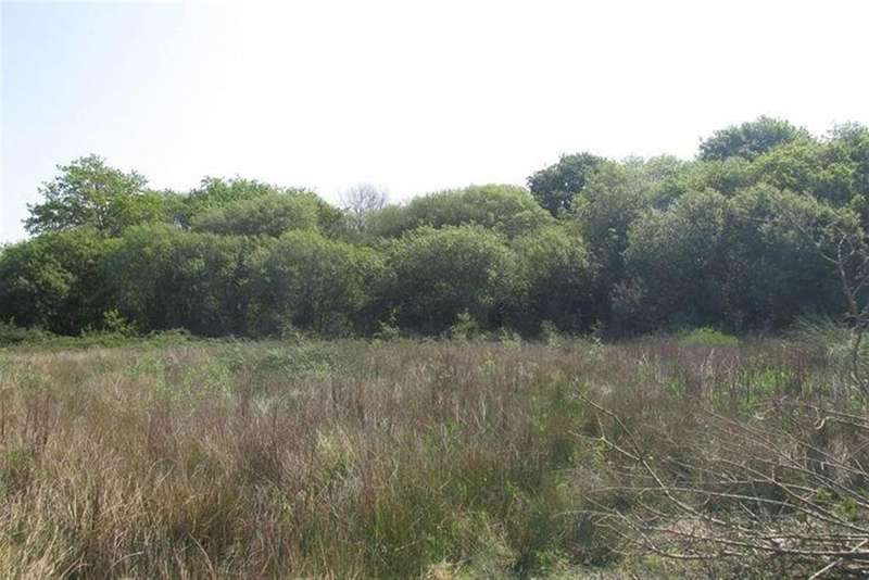 4 Bedrooms Land Commercial for sale in Westfield Road, Waunarlwydd, Swansea