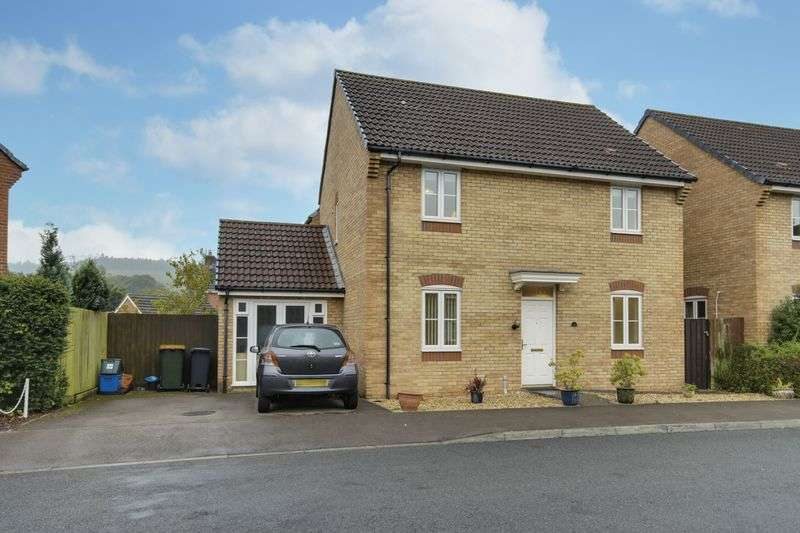 4 Bedrooms Detached House for sale in Narcissus Grove, Newport