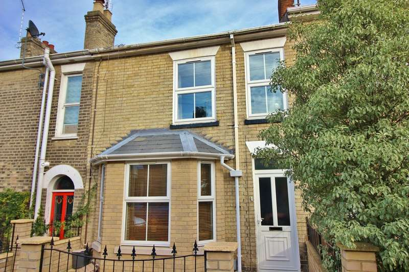 3 Bedrooms Terraced House for sale in Havelock Road, Norwich