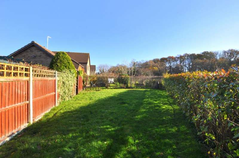3 Bedrooms Detached Bungalow for sale in Watership Drive, Hightown, Ringwood, BH24 1QY
