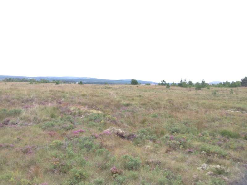 Land Commercial for sale in The Croft Croit Pasquale, Achairn, Shinness , Lairg, IV27 4DN