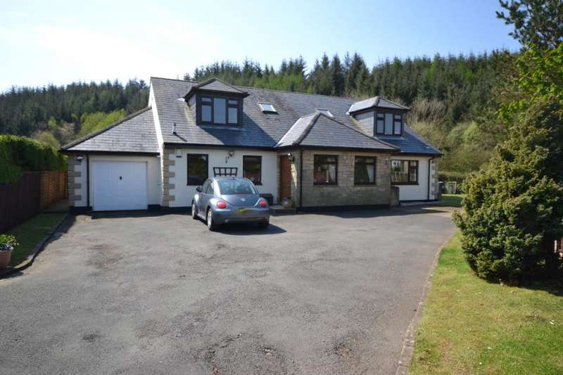 5 Bedrooms Detached House for sale in Deepdale, Holmfoot Newcastleton, TD9 0TA