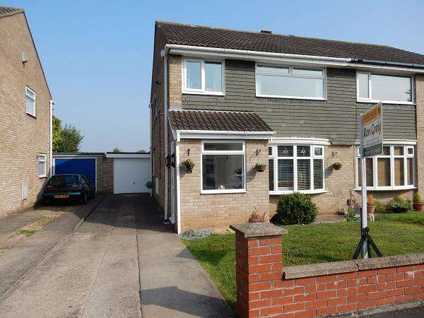 3 Bedrooms Semi Detached House for sale in Petrel Crescent, Norton, Stockton on Tees TS20