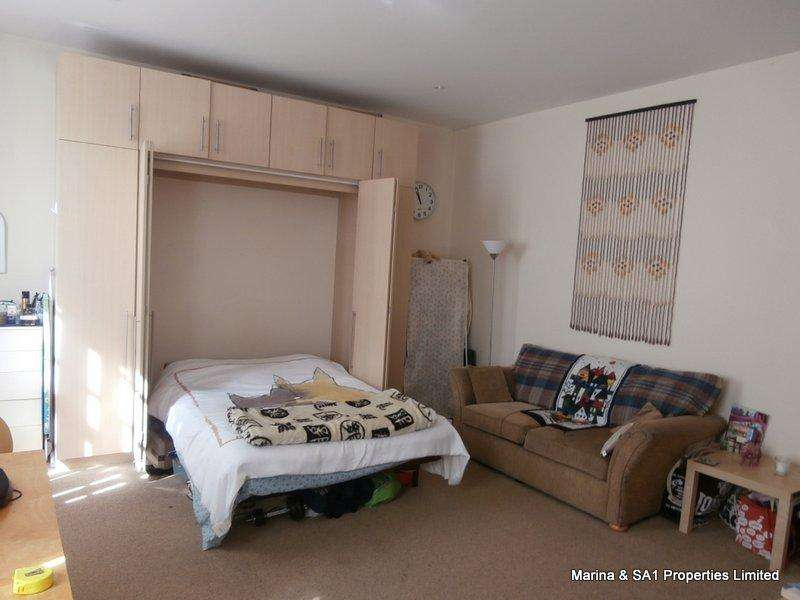 Studio Flat for sale in Cambrian Place, Swansea SA1