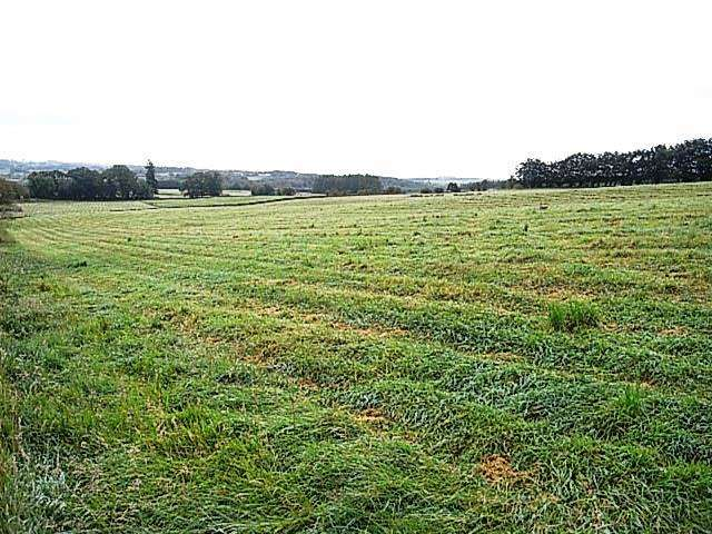 Farm Land Commercial for sale in Harelaw, Canonbie DG14