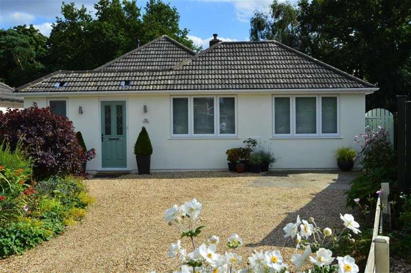 3 Bedrooms Detached Bungalow for sale in Paget Close, Wimborne, Dorset