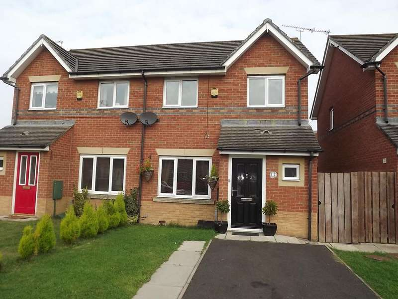 3 Bedrooms Semi Detached House for sale in Wansbeck Mews, South Shields