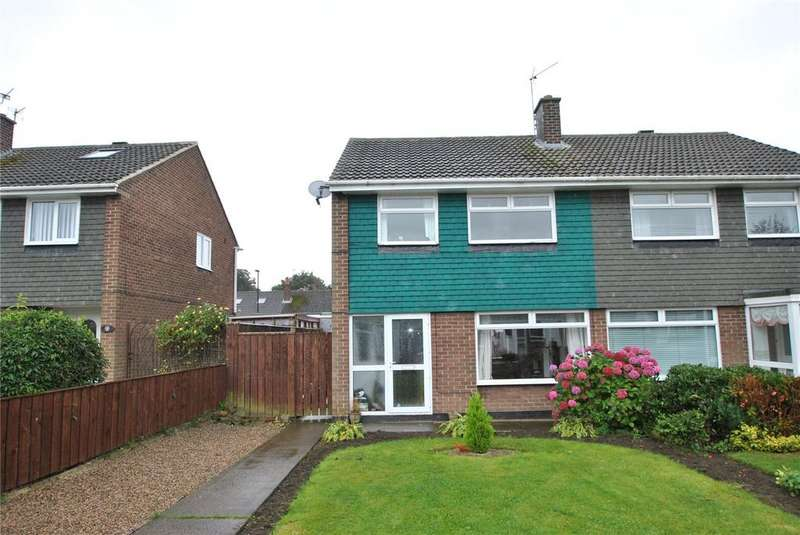 3 Bedrooms Semi Detached House for sale in Witton Grove, Dairy Lane, Houghton le Spring, DH4