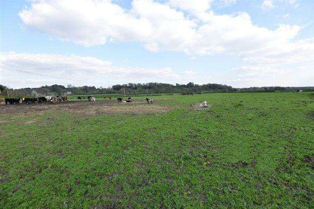 Land Commercial for sale in East Mills Nr Fordingbridge