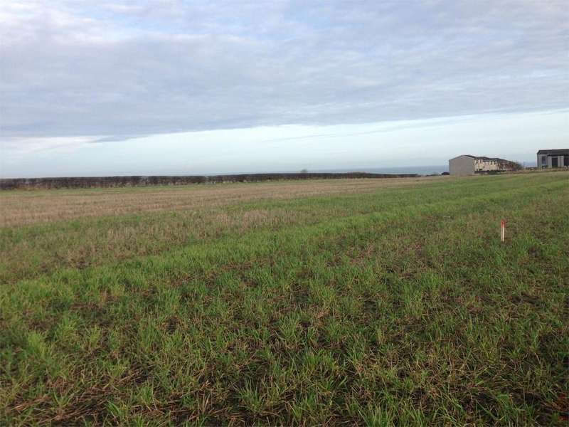 Land Commercial for sale in Land East of Springhill, Berwick upon Tweed, Northumberland