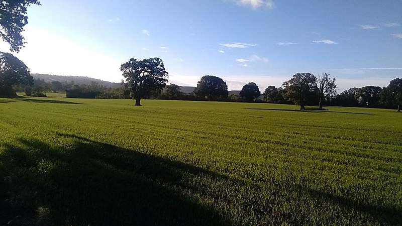 Land Commercial for sale in Munslow, Craven Arms, Shropshire