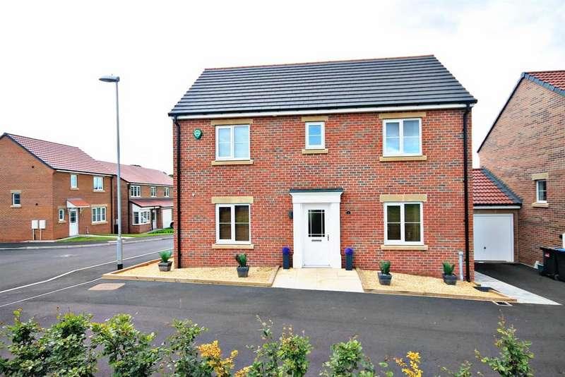 4 Bedrooms Detached House for sale in Little Burn Way, Pelton Fell