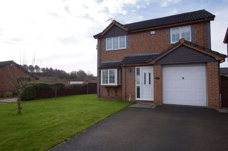3 Bedrooms Detached House for sale in Taunton Way, Llwyn Onn Park, Wrexham
