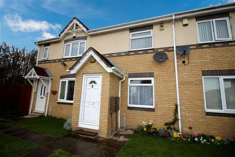 2 Bedrooms Terraced House for sale in Blucher Road, North Shields
