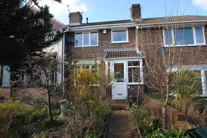 2 Bedrooms Town House for sale in Thornhill Avenue, Brinsworth