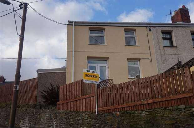 3 Bedrooms End Of Terrace House for sale in Dafalog Terrace, Phillipstown, NEW TREDEGAR, Caerphilly