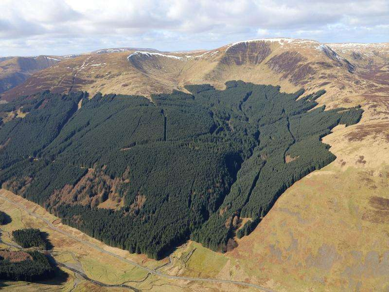 Land Commercial for sale in Polmoodie Forest, Near Moffat, Dumfries and Galloway DG10